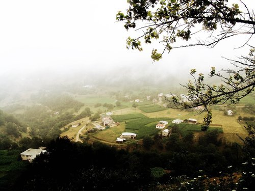 De Ardennen: unieke natuurpracht!